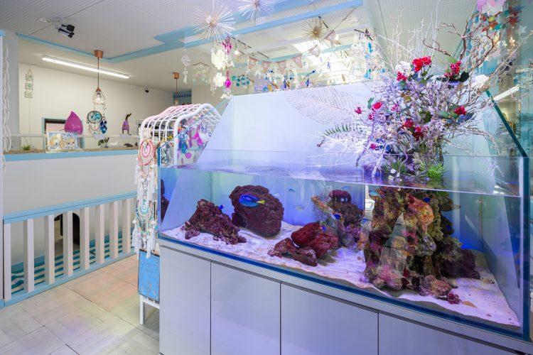 沖縄雑貨カフェ・ワンのシュノーケル様店舗リノベーションの画像6